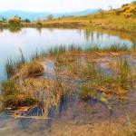 Zones humides vallée de l'Orb